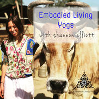 Enjoy Shannon Elliotts dharma talks on Embodied Living Yoga podcasts.